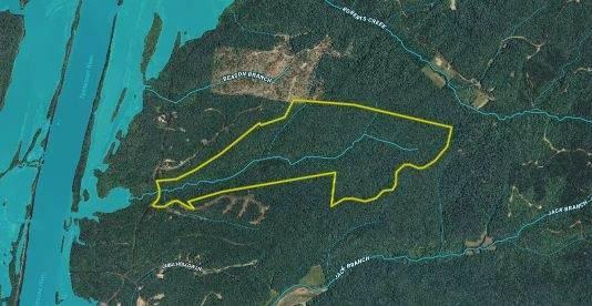 0 Cuba Landing Rd, Waverly, TN 37185 (MLS #RTC2202451) :: Team George Weeks Real Estate