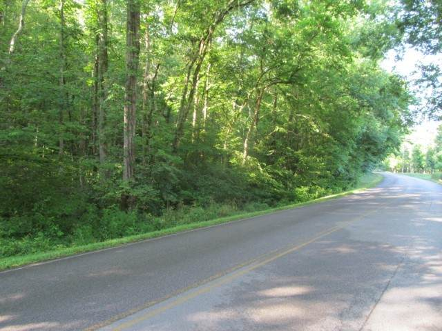 441 Napier Rd, Hohenwald, TN 38462 (MLS #RTC2203746) :: Nashville on the Move