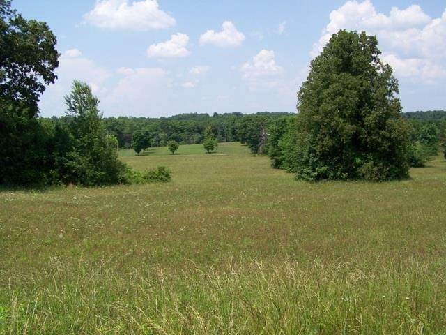 0 Peach Ave, Morrison, TN 37357 (MLS #RTC2209044) :: Team George Weeks Real Estate