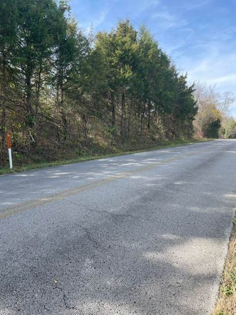 0 Nicholson Schoolhouse Road, Columbia, TN 38401 (MLS #RTC2209056) :: Wages Realty Partners