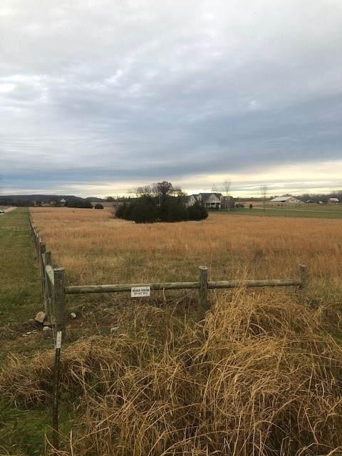 1882 Sawgrass Ln, Chapel Hill, TN 37034 (MLS #RTC2211470) :: Five Doors Network