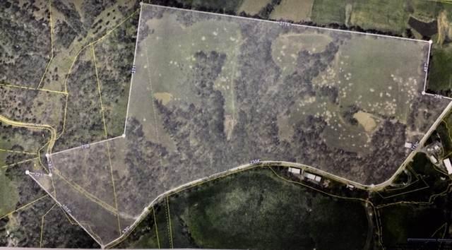 2876 Indian Mound Rd, Indian Mound, TN 37079 (MLS #RTC2211821) :: The Helton Real Estate Group
