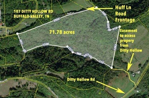 107 Ditty Hollow Rd, Buffalo Valley, TN 38548 (MLS #RTC2214405) :: Village Real Estate