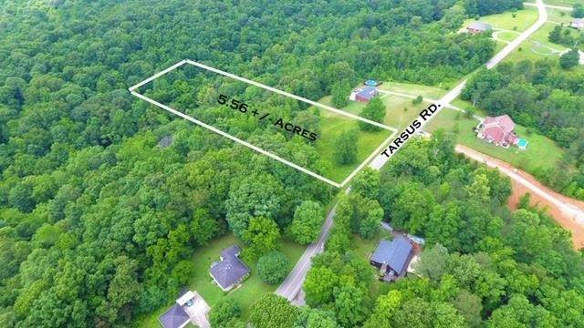 3390 Tarsus Rd, Palmyra, TN 37142 (MLS #RTC2217053) :: Maples Realty and Auction Co.