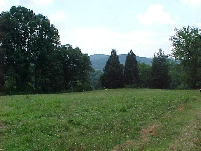 135 Haze Hyde Hollow Rd, Bethpage, TN 37022 (MLS #RTC2221264) :: Village Real Estate