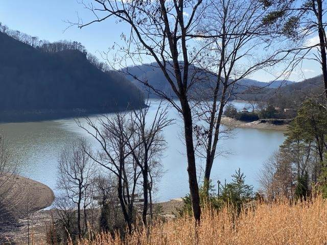 2 Walnut Bend Dr, Whitesburg, TN 37891 (MLS #RTC2221290) :: HALO Realty