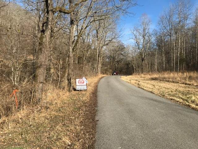 0 Mud Hollow Rd, Hendersonville, TN 37075 (MLS #RTC2221650) :: Michelle Strong
