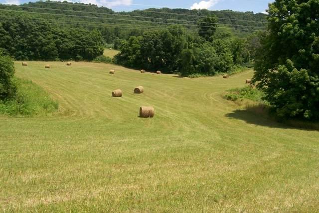 0 Webbs Camp Rd, Walling, TN 38587 (MLS #RTC2222140) :: Village Real Estate