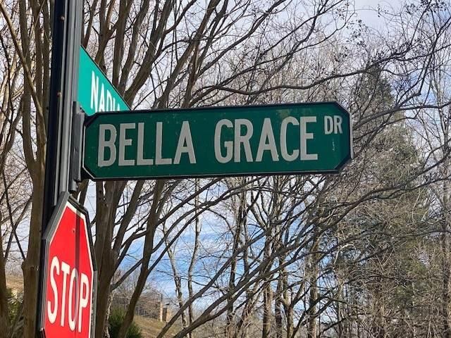 20 Bella Grace Dr, Smithville, TN 37166 (MLS #RTC2224386) :: Village Real Estate