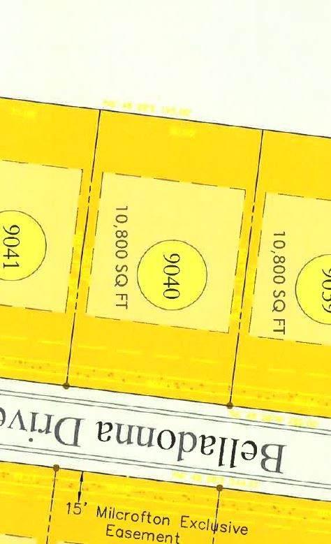 8719 Belladonna Dr (Lot 9040), College Grove, TN 37046 (MLS #RTC2225047) :: The Adams Group