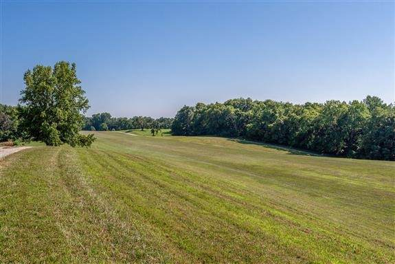 225 Slow Roll, Chapmansboro, TN 37035 (MLS #RTC2225163) :: Kimberly Harris Homes