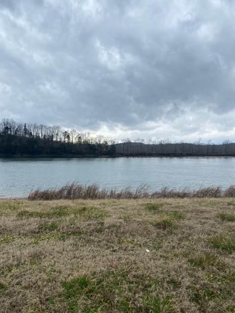 1481 Hardin Bottom Riv Rd, Clifton, TN 38425 (MLS #RTC2225198) :: Village Real Estate