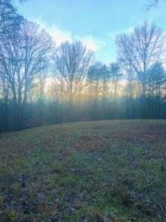 390 Mascoe Hamlet Ln, Gainesboro, TN 38562 (MLS #RTC2226099) :: Village Real Estate