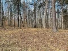 8 Nature Ridge, Tullahoma, TN 37388 (MLS #RTC2229259) :: Village Real Estate