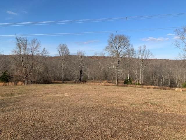 0 Elk Crk Rd, Cumberland City, TN 37050 (MLS #RTC2231114) :: Village Real Estate