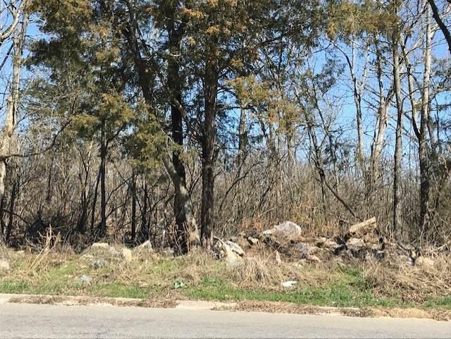 338 Rio Vista Dr, Madison, TN 37115 (MLS #RTC2232704) :: Berkshire Hathaway HomeServices Woodmont Realty