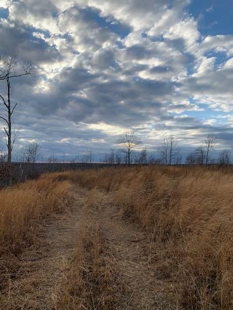 0 S Hurricane Creek Rd - Photo 1