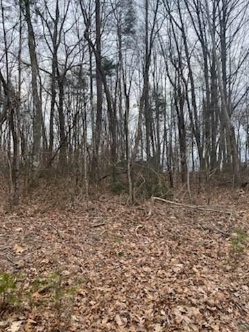 0 Bluff View Drive, Spencer, TN 38585 (MLS #RTC2236471) :: Village Real Estate