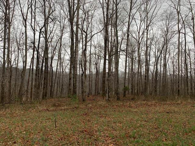 0 Eagle Loop, Loretto, TN 38469 (MLS #RTC2237118) :: Village Real Estate