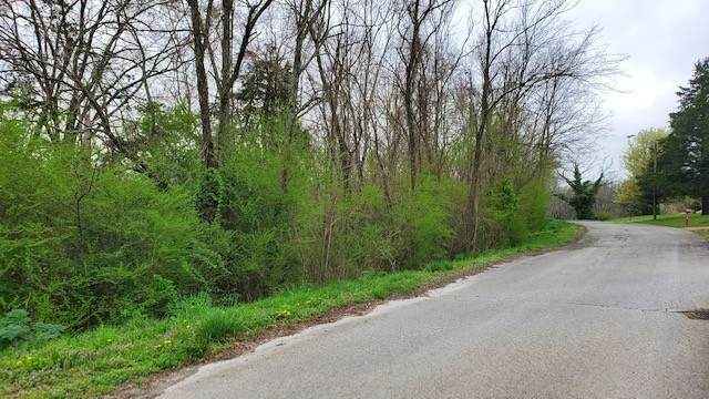 0 Graves Dr, Lawrenceburg, TN 38464 (MLS #RTC2240155) :: Exit Realty Music City