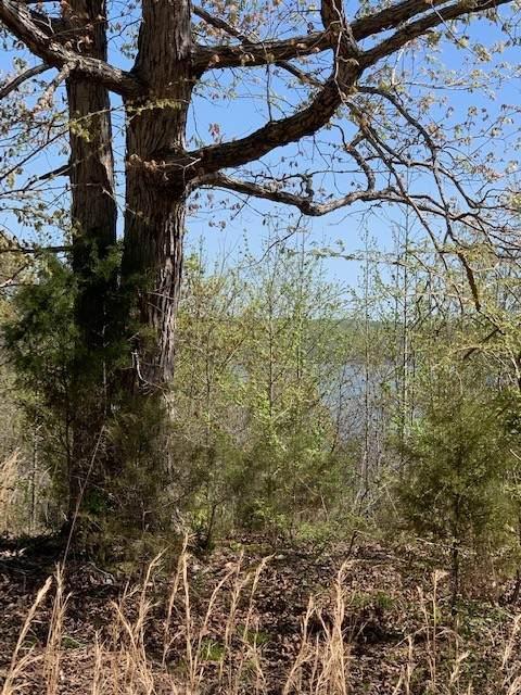 0 N Of Holland Point Road, Stewart, TN 37175 (MLS #RTC2243702) :: Fridrich & Clark Realty, LLC