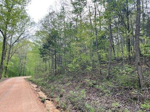 0 Brown Bnd Rd, Only, TN 37140 (MLS #RTC2248081) :: Berkshire Hathaway HomeServices Woodmont Realty