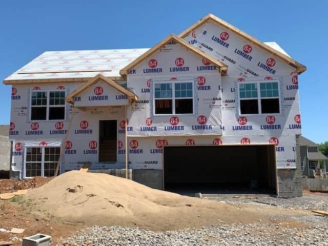 509 Macy Lynn Drive, Clarksville, TN 37042 (MLS #RTC2249420) :: Fridrich & Clark Realty, LLC