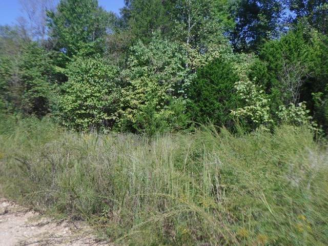 1998 Rock Spgs Rd, Celina, TN 38551 (MLS #RTC2252282) :: Armstrong Real Estate