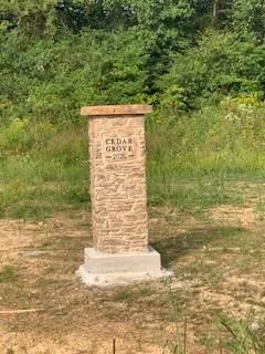 0 Cedar Grove Drive, Fayetteville, TN 37334 (MLS #RTC2252900) :: Trevor W. Mitchell Real Estate