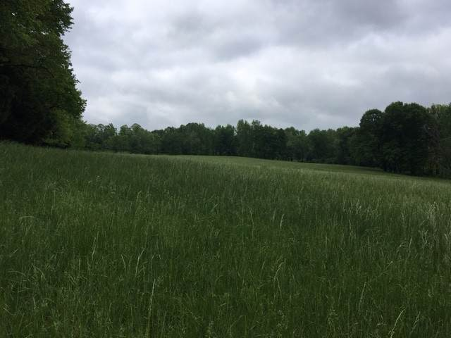 0 Tucker Road, Dickson, TN 37055 (MLS #RTC2253513) :: Trevor W. Mitchell Real Estate