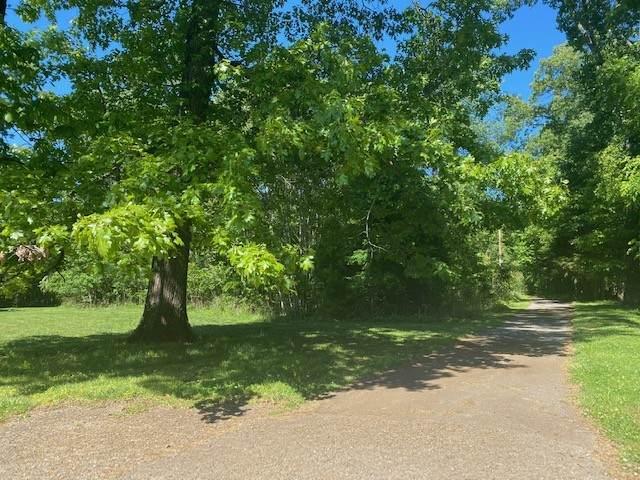 0 Forest View Rd., Decherd, TN 37324 (MLS #RTC2253801) :: EXIT Realty Bob Lamb & Associates