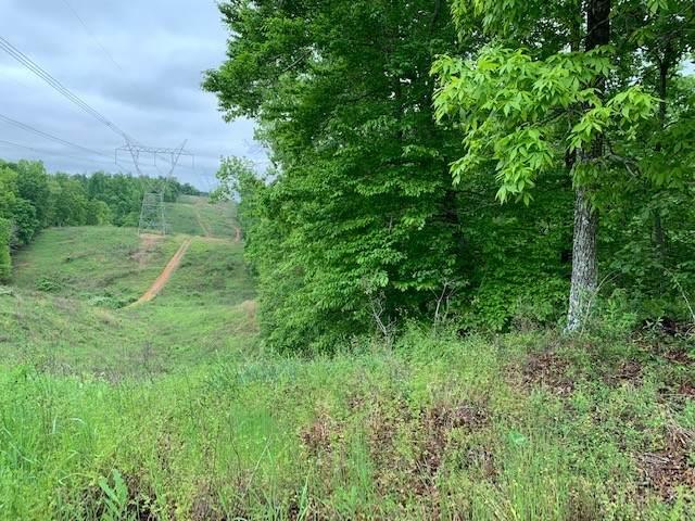 138 W Gregory Rd, Stewart, TN 37175 (MLS #RTC2255812) :: Village Real Estate