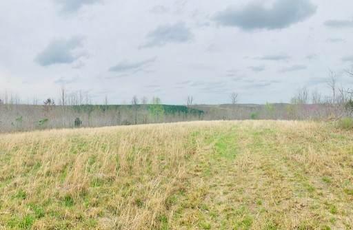 0 Ridgetop Rd, Hampshire, TN 38461 (MLS #RTC2261184) :: Village Real Estate