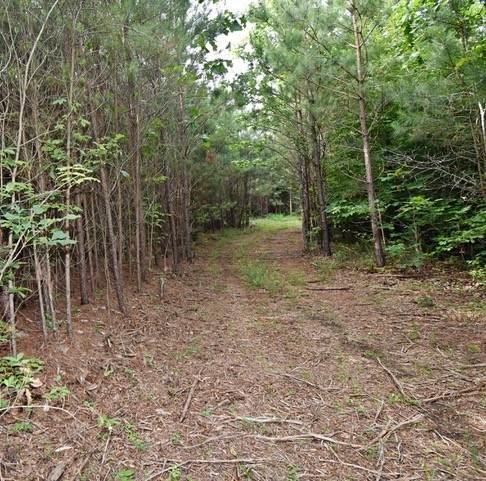 0 Pine Tree Dr, Parsons, TN 38363 (MLS #RTC2263505) :: Village Real Estate