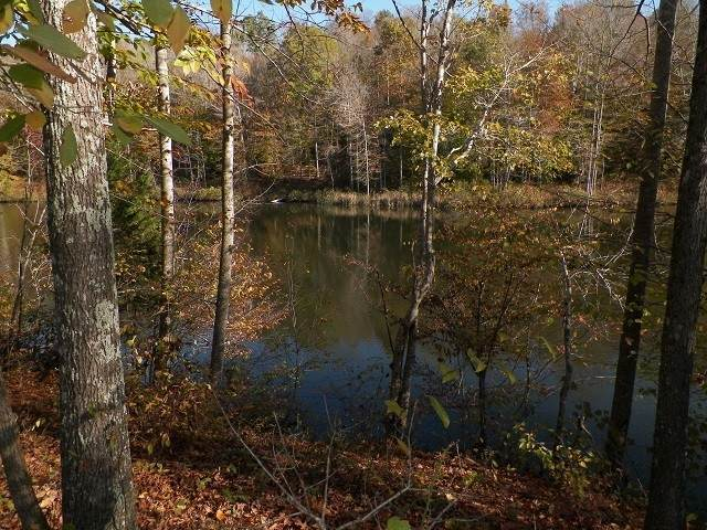 0 Oak Grove Rd, Red Boiling Springs, TN 37150 (MLS #RTC2263826) :: Village Real Estate