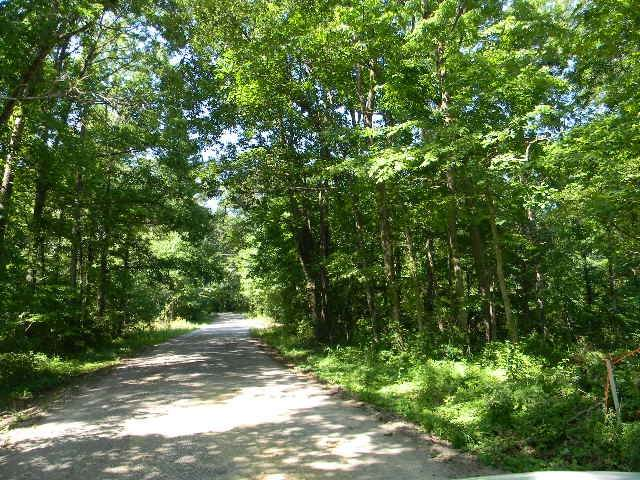 0 Mt. Zion Lane N, Mc Ewen, TN 37101 (MLS #RTC2263856) :: Village Real Estate
