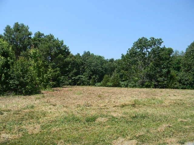 0 Mt. Zion Lane N, Mc Ewen, TN 37101 (MLS #RTC2264291) :: Village Real Estate