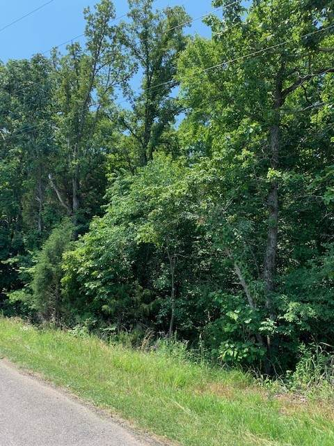 0 Walker Ridge Rd, Big Rock, TN 37023 (MLS #RTC2264525) :: EXIT Realty Bob Lamb & Associates