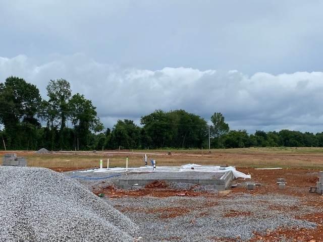141 Irish Hills, Clarksville, TN 37042 (MLS #RTC2265330) :: Nelle Anderson & Associates