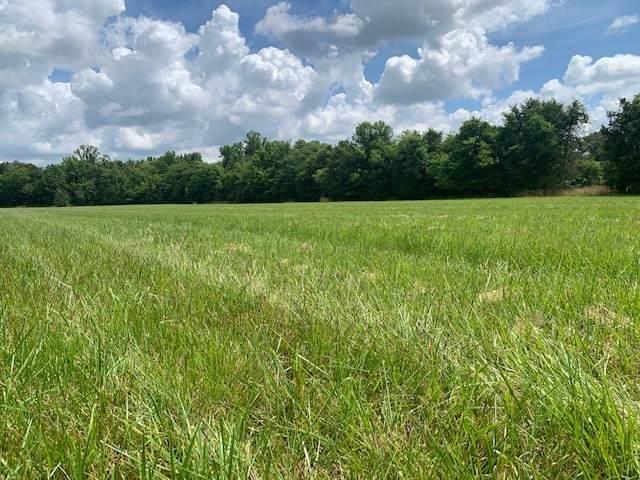 15075 Versailles Rd, Rockvale, TN 37153 (MLS #RTC2270678) :: EXIT Realty Bob Lamb & Associates
