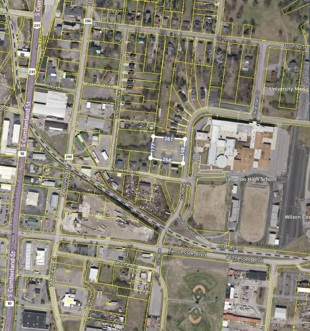 355 Harding Dr, Lebanon, TN 37087 (MLS #RTC2276156) :: Team George Weeks Real Estate