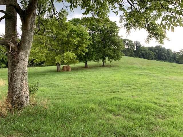 3350 Cainsville Rd, Lebanon, TN 37090 (MLS #RTC2277238) :: Village Real Estate