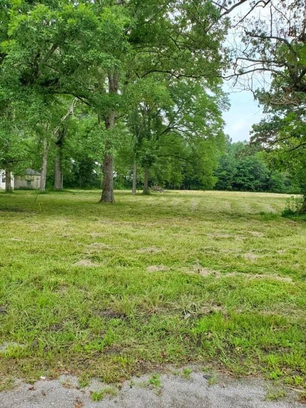 0 Murfreesboro Hwy - Photo 1