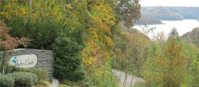 19 Harbor Pointe Dr, Silver Point, TN 38582 (MLS #RTC2284313) :: Maples Realty and Auction Co.