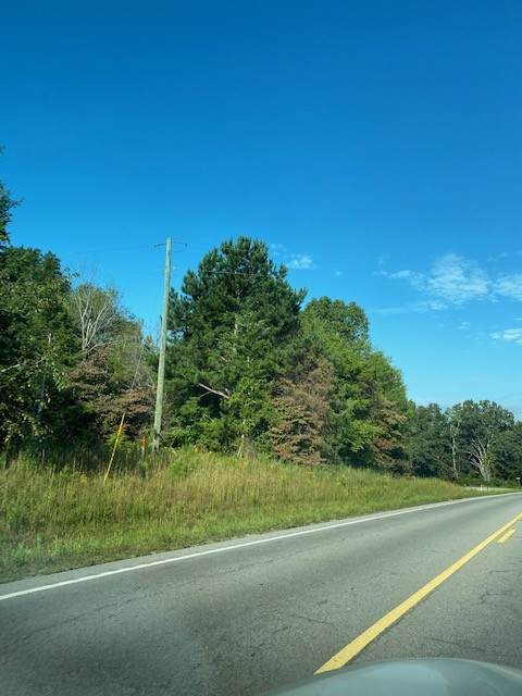 1043 Highway 96 - Photo 1