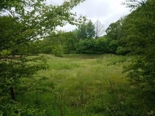 0 Fairview Blvd, Fairview, TN 37062 (MLS #RTC2292867) :: Village Real Estate