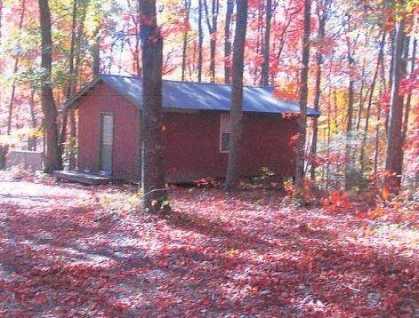 2150 Carrington Road, Bloomington Springs, TN 38545 (MLS #RTC2295248) :: Nashville Home Guru