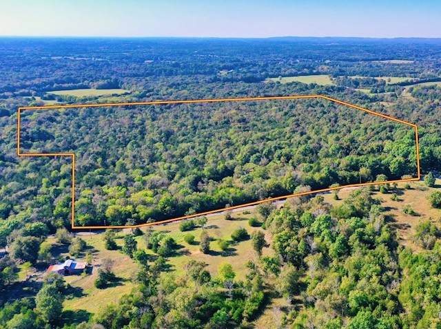 146 Paschal Rd, Unionville, TN 37180 (MLS #RTC2297494) :: DeSelms Real Estate