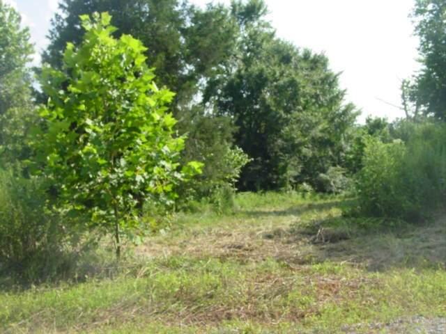 3 Bryton Court, Burns, TN 37029 (MLS #RTC2300287) :: Village Real Estate