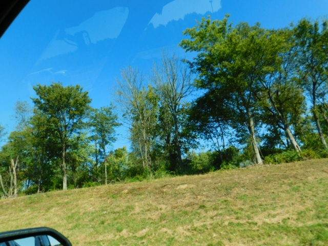 267 Peachers Ln, Indian Mound, TN 37079 (MLS #RTC2301521) :: The Miles Team | Compass Tennesee, LLC
